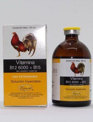 vitamin B12 6000